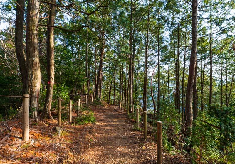 谷瀬の吊り橋の散歩道・神社裏の道