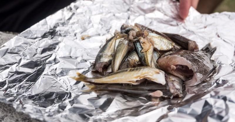 友ヶ島で釣った魚を調理