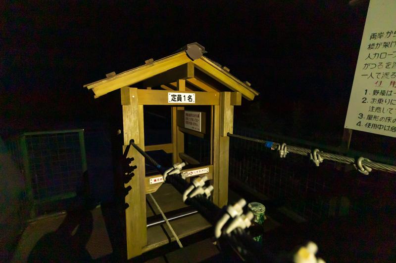 十津川村の夜の野猿