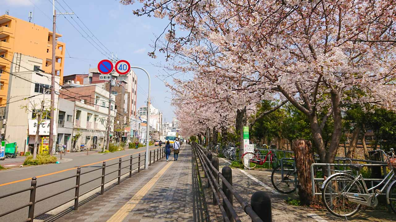 東淀川駅前の桜