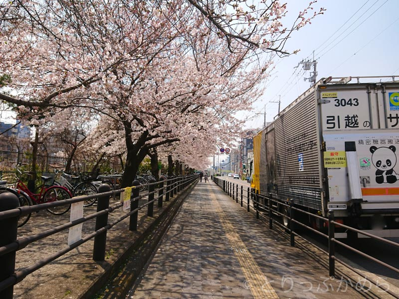 東淀川駅前の桜2