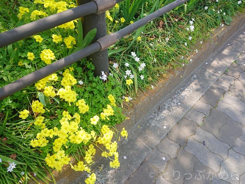 東淀川駅周辺を散歩1