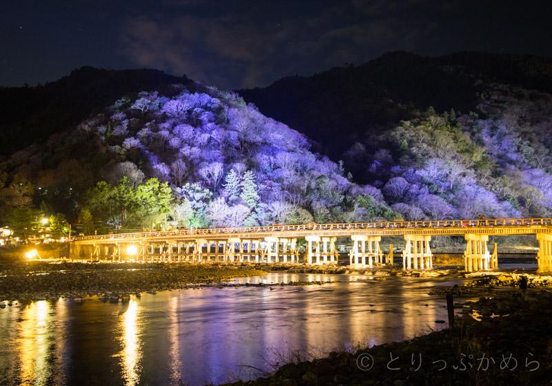 嵐山のライトアップ