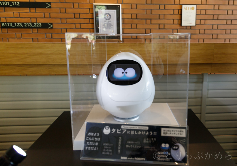 ハウステンボスの変なホテルのロボットのタピア