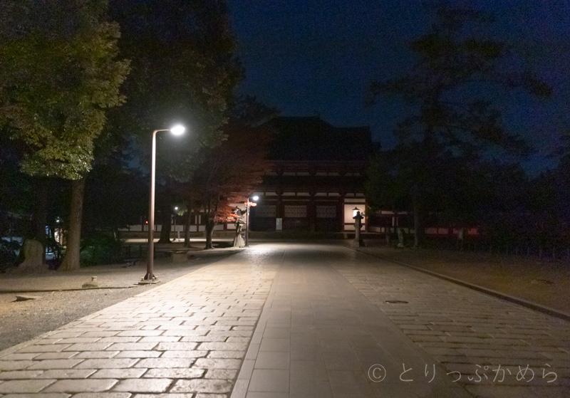 奈良の夜の東大寺南大門参道
